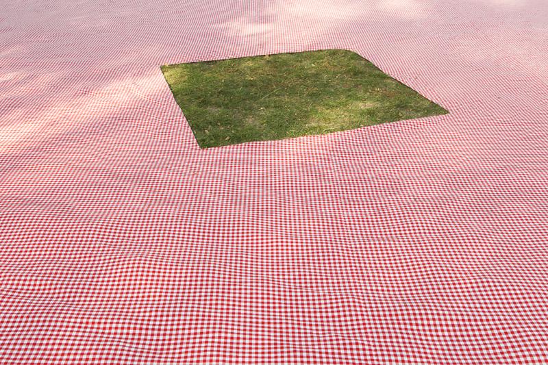 sur l'herbe